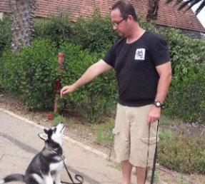 מאלף כלבים