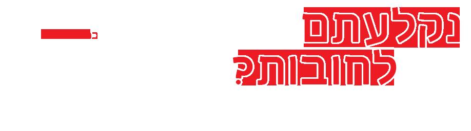 משרד עורכי דין דודי לוי